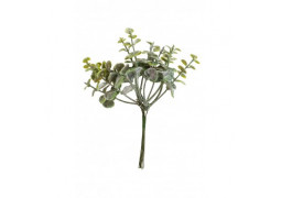 Mini bouquet eucalyptus