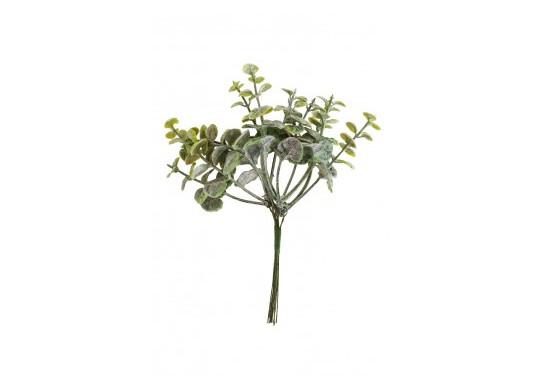 Mini bouquet eucalyptus